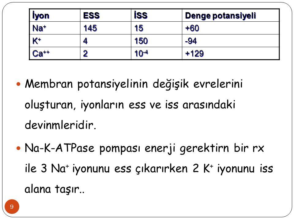 İyonESSİSS Denge potansiyeli Na + 14515+60 K+K+K+K+4150-94 Ca ++ 2 10 -4 +129 9 Membran potansiyelinin değişik evrelerini oluşturan, iyonların ess ve