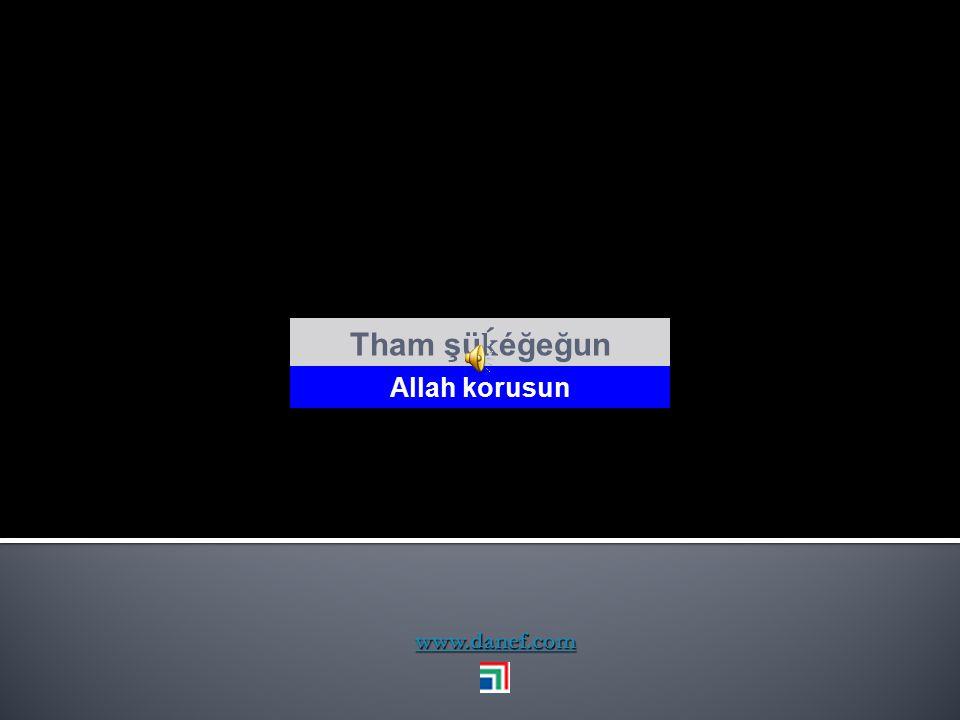 www.danef.com Ḣ ayr xeĺew Tham yeşı` Hayırlısı olsun
