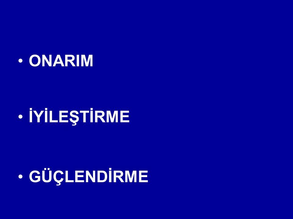 PASİF ve AKTİF ENERJİ SÖNÜMLEYİCİ SİSTEMLER (SİSMİK DAMPERLER ).
