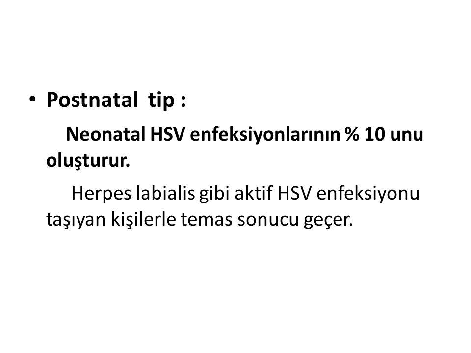 Postnatal tip : Neonatal HSV enfeksiyonlarının % 10 unu oluşturur. Herpes labialis gibi aktif HSV enfeksiyonu taşıyan kişilerle temas sonucu geçer.