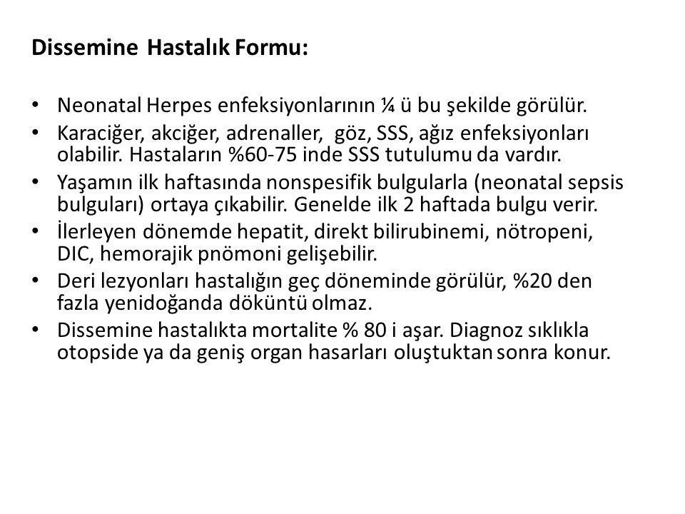 Dissemine Hastalık Formu: Neonatal Herpes enfeksiyonlarının ¼ ü bu şekilde görülür. Karaciğer, akciğer, adrenaller, göz, SSS, ağız enfeksiyonları olab