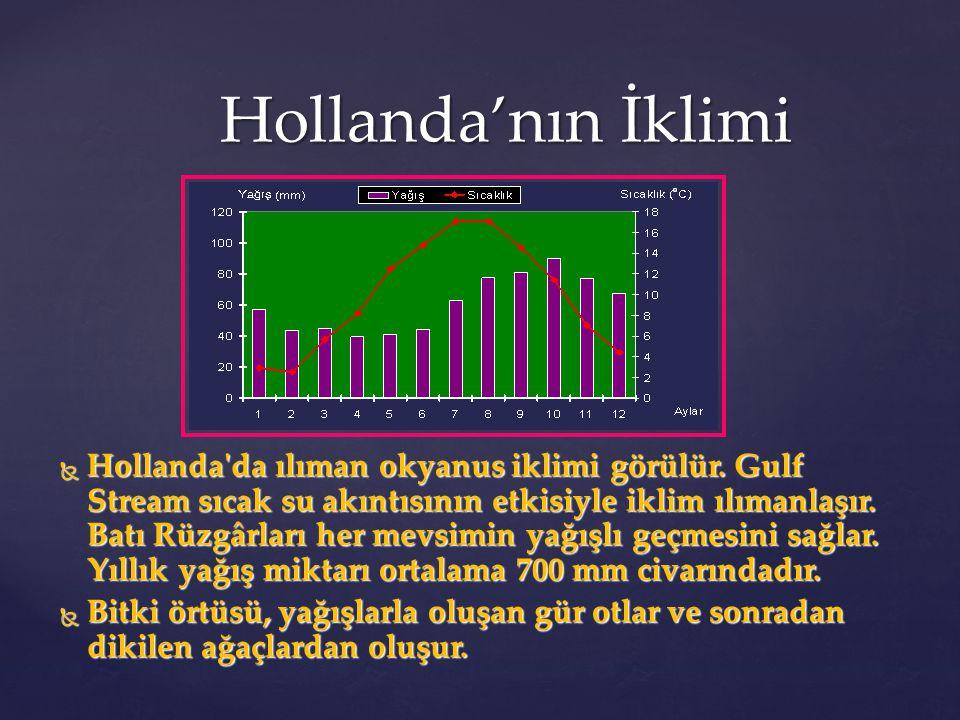 Hollanda'nın İklimi  Hollanda'da ılıman okyanus iklimi görülür. Gulf Stream sıcak su akıntısının etkisiyle iklim ılımanlaşır. Batı Rüzgârları her mev