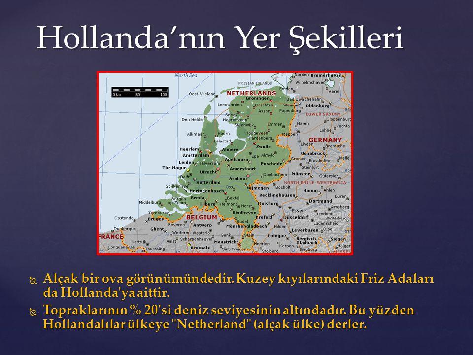 Hollanda'nın Yer Şekilleri  Alçak bir ova görünümündedir. Kuzey kıyılarındaki Friz Adaları da Hollanda'ya aittir.  Topraklarının % 20'si deniz seviy