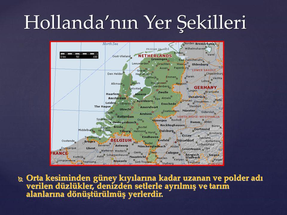Hollanda'nın Yer Şekilleri  Orta kesiminden güney kıyılarına kadar uzanan ve polder adı verilen düzlükler, denizden setlerle ayrılmış ve tarım alanla