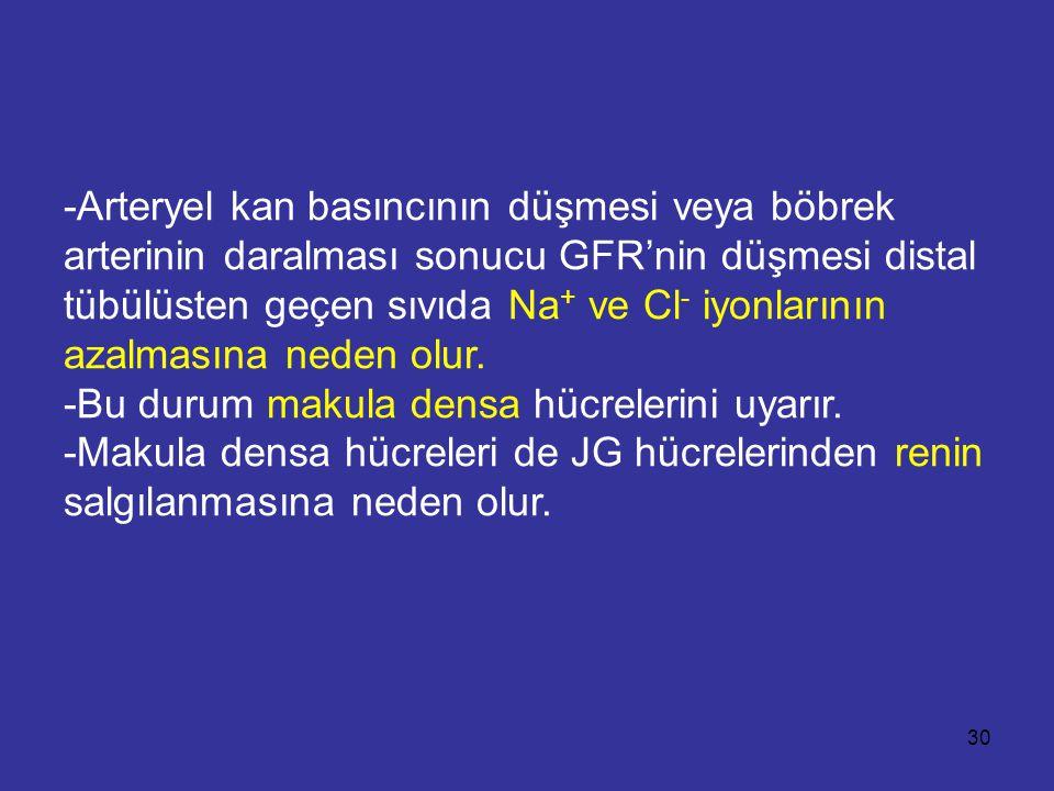 -Arteryel kan basıncının düşmesi veya böbrek arterinin daralması sonucu GFR'nin düşmesi distal tübülüsten geçen sıvıda Na + ve Cl - iyonlarının azalma