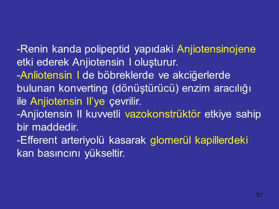 -Renin kanda polipeptid yapıdaki Anjiotensinojene etki ederek Anjiotensin I oluşturur. -Anliotensin I de böbreklerde ve akciğerlerde bulunan konvertin