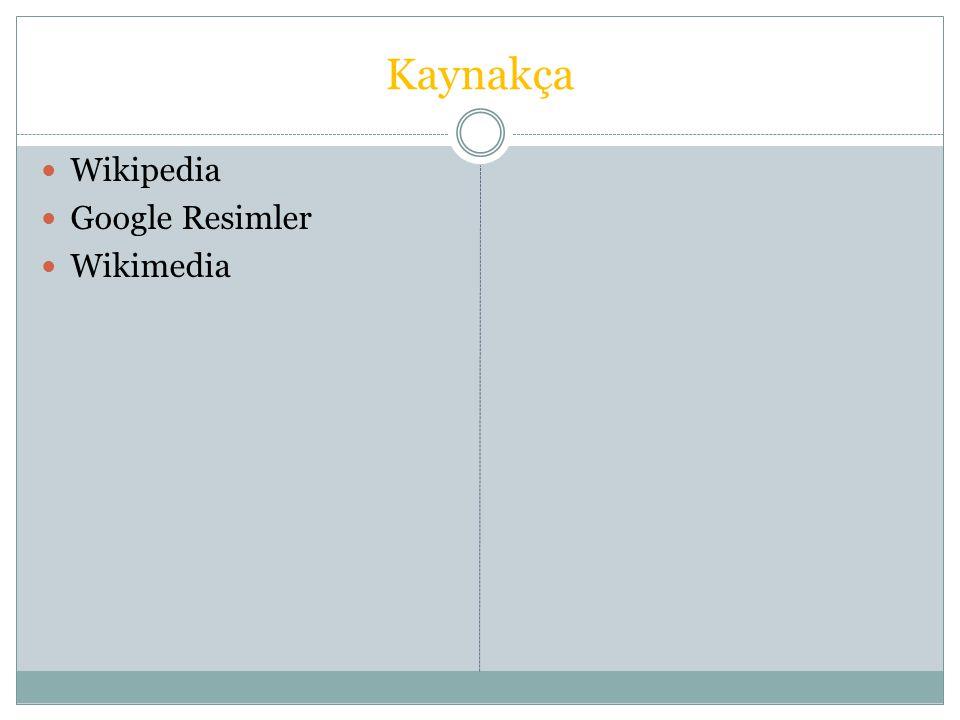 Dolmabahçe Sarayı Dolmabahçe Sarayı, Karaköy den Sarıyer e uzanan sahil şeridinin Kabataş ile Beşiktaş arasında kalan bölümünde, Marmara Denizi nden Boğaziçi ne deniz yoluyla girişte sol kıyıda, Üsküdar ın karşısında yer alan saray.KaraköySarıyerKabataşBeşiktaşMarmara DeniziBoğaziçidenizÜsküdarsaray Dolmabahçe Sarayı nın bugün bulunduğu alan, bundan dört yüzyıl öncesine kadar Osmanlı Kaptan-ı Derya sının gemileri demirlediği, Boğaziçi nin büyük bir koyu idi.