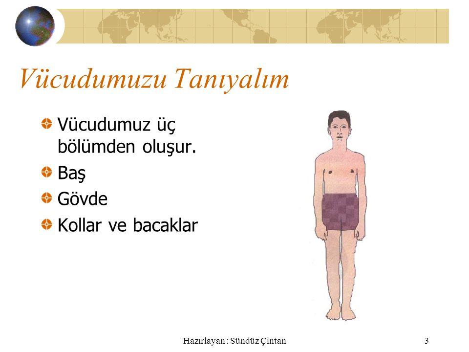 Hazırlayan : Sündüz Çintan3 Vücudumuzu Tanıyalım Vücudumuz üç bölümden oluşur.