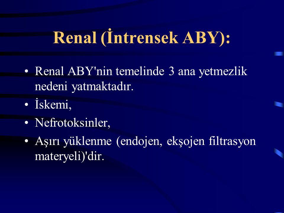 Renal (İntrensek ABY): Renal ABY'nin temelinde 3 ana yetmezlik nedeni yatmaktadır. İskemi, Nefrotoksinler, Aşırı yüklenme (endojen, ekşojen filtrasyon
