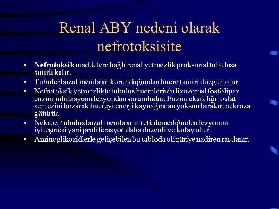 Renal ABY nedeni olarak nefrotoksisite Nefrotoksik maddelere bağlı renal yetmezlik proksimal tubulusa sınırlı kalır. Tubuler bazal membran korunduğund