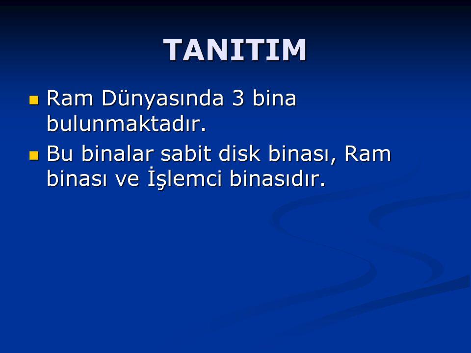TANITIM Sabit disk binasında değişken ve sabitlerle ilgili bilgiler bulunmaktadır.