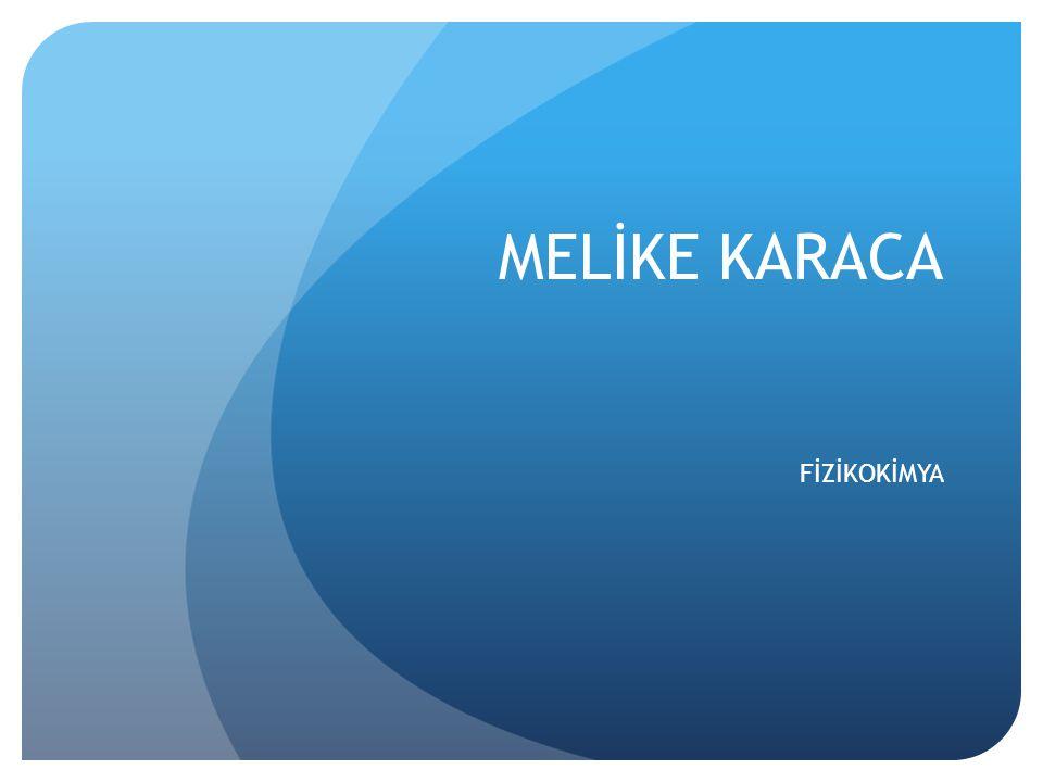 Birçok yabancı gazetede Türkiye ve Türkler hakkında yazılar yazdı.