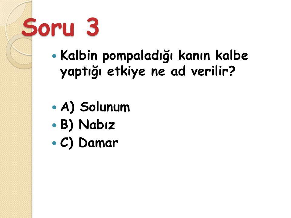CEVAP 2 B) 5