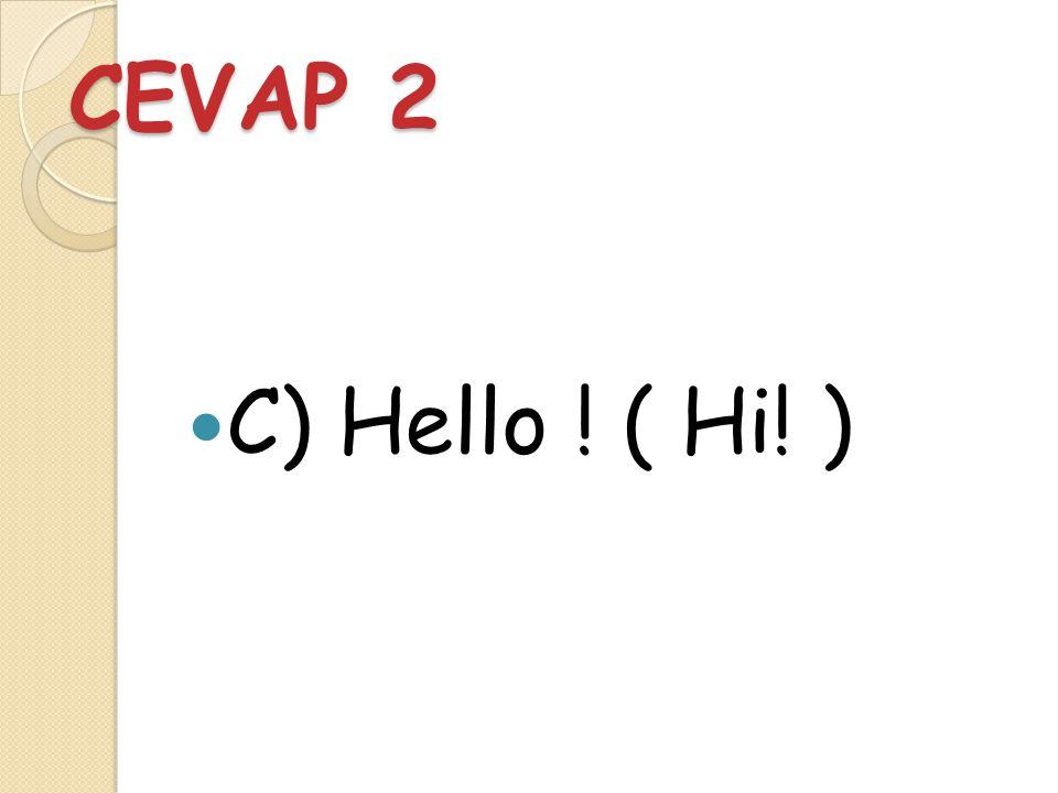 SORU 2 Biriyle karşılaştığınızda İngilizce olarak nasıl selam verirsiniz.