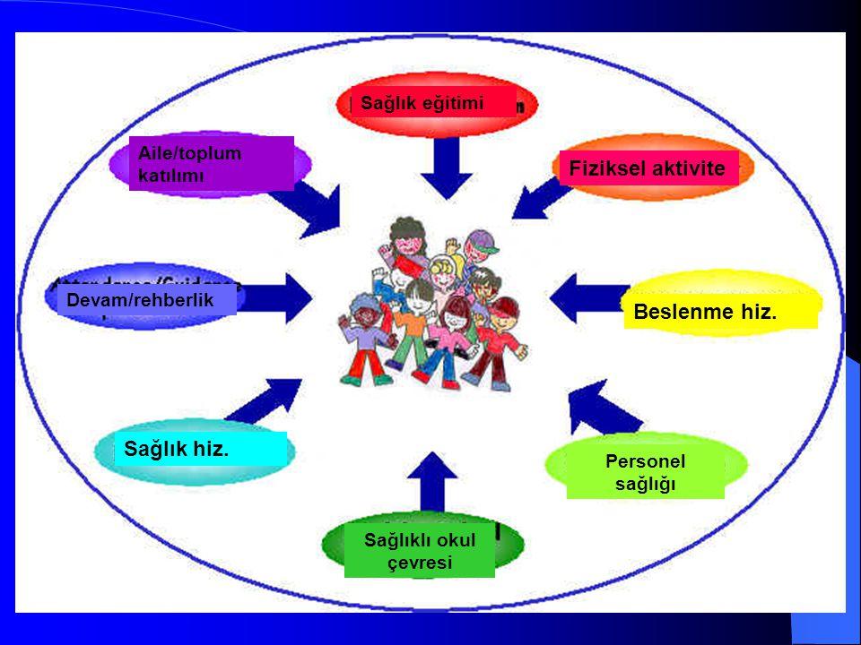 Fiziksel aktivite Beslenme hiz. Sağlıklı okul çevresi Sağlık hiz. Sağlık eğitimi Aile/toplum katılımı Personel sağlığı Devam/rehberlik