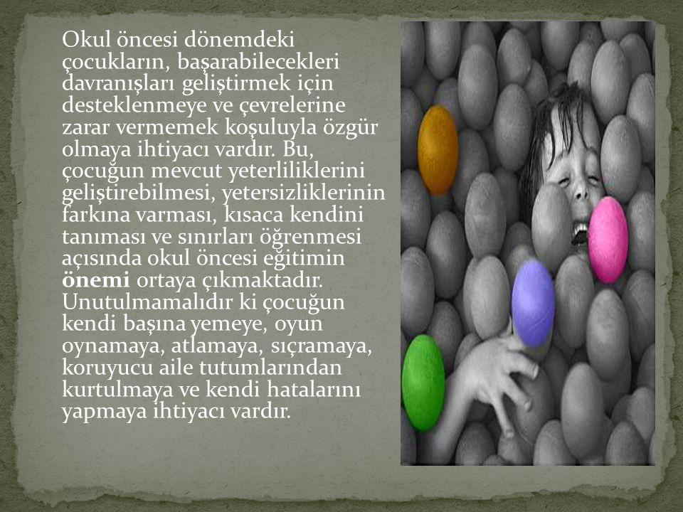Türkiye'de 0-6 yaş grubundaki çocukların yaklaşık %20'si yuvaya, %7'si anaokuluna gitmektedir (Ağar, M. PAÜ Açılış Konuşması). Bu oran olması gerekeni