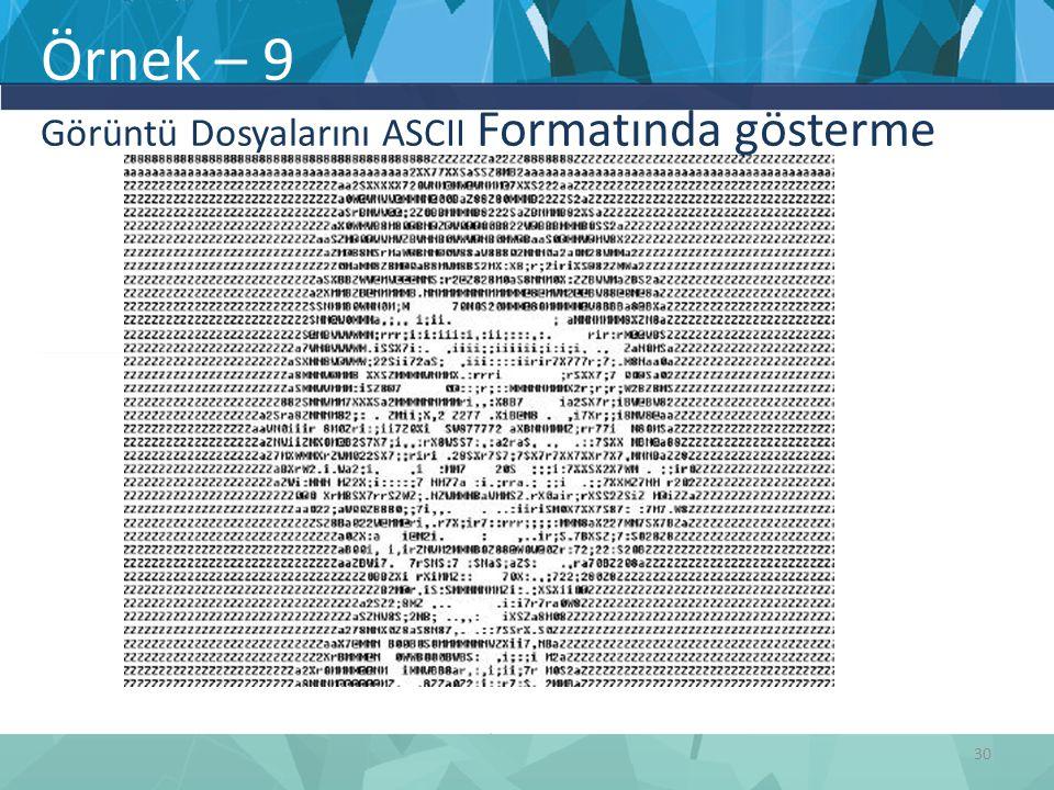 Örnek – 9 Görüntü Dosyalarını ASCII Formatında gösterme 30