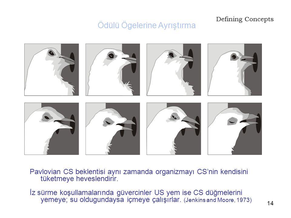 14 Defining Concepts Pavlovian CS beklentisi aynı zamanda organizmayı CS'nin kendisini tüketmeye heveslendirir. İz sürme koşullamalarında güvercinler