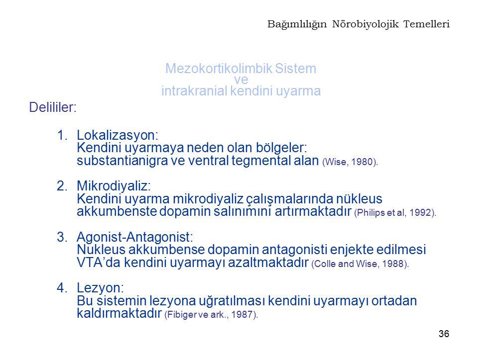 36 Delililer: 1.Lokalizasyon: Kendini uyarmaya neden olan bölgeler: substantianigra ve ventral tegmental alan (Wise, 1980). 2. Mikrodiyaliz: Kendini u