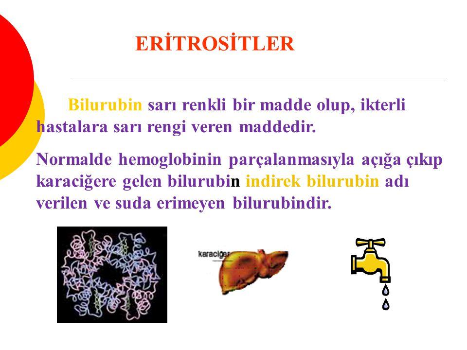 ERİTROSİTLER Bilurubin sarı renkli bir madde olup, ikterli hastalara sarı rengi veren maddedir. Normalde hemoglobinin parçalanmasıyla açığa çıkıp kara