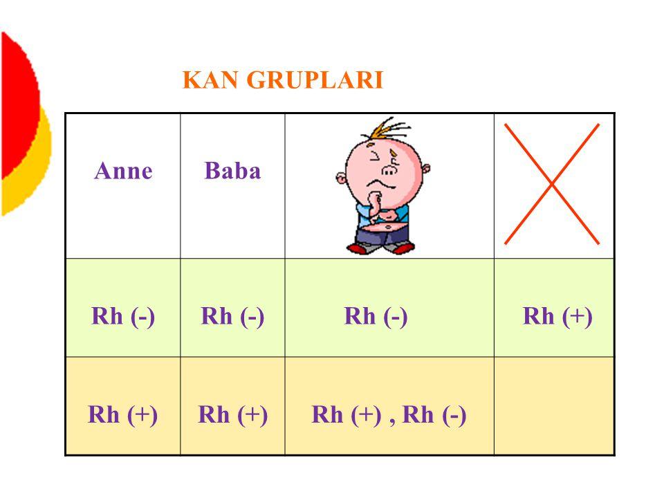 AnneBaba Rh (-) Rh (+) Rh (+), Rh (-) KAN GRUPLARI