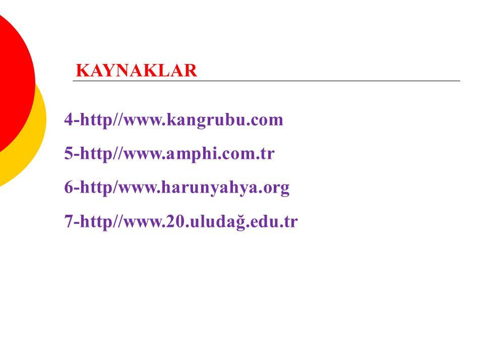 KAYNAKLAR 4-http//www.kangrubu.com 5-http//www.amphi.com.tr 6-http/www.harunyahya.org 7-http//www.20.uludağ.edu.tr