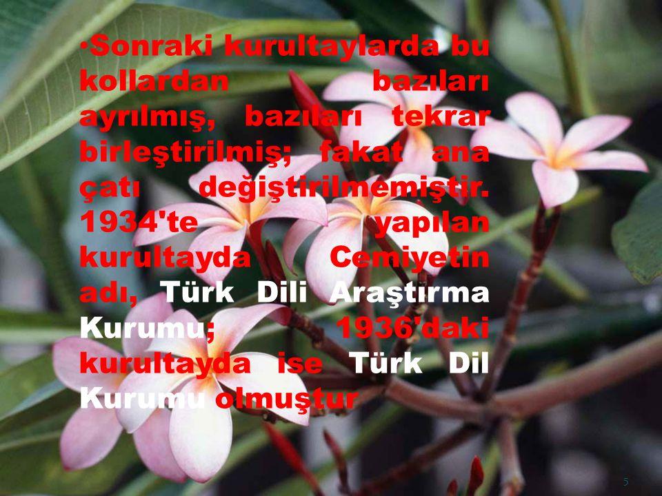 Türk Dil Kurumu başlangıçtan beri çalışmalarını iki ana eksen üzerinde yürütmüştür 1.