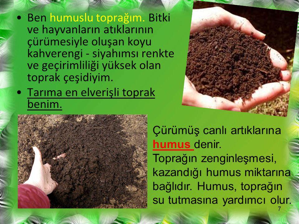 Ben humuslu toprağım. Bitki ve hayvanların atıklarının çürümesiyle oluşan koyu kahverengi - siyahımsı renkte ve geçirimliliği yüksek olan toprak çeşid