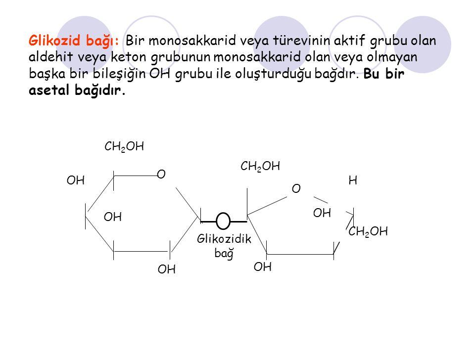 Glikozid bağı: Bir monosakkarid veya türevinin aktif grubu olan aldehit veya keton grubunun monosakkarid olan veya olmayan başka bir bileşiğin OH grub