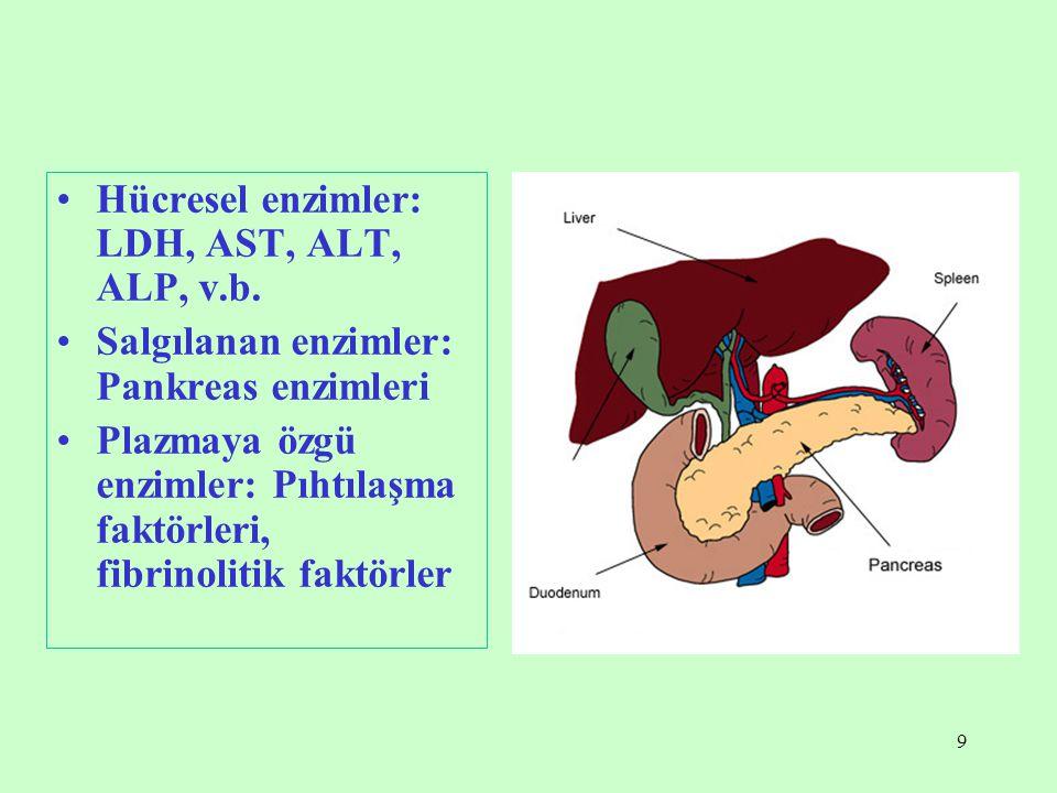 9 Hücresel enzimler: LDH, AST, ALT, ALP, v.b. Salgılanan enzimler: Pankreas enzimleri Plazmaya özgü enzimler: Pıhtılaşma faktörleri, fibrinolitik fakt