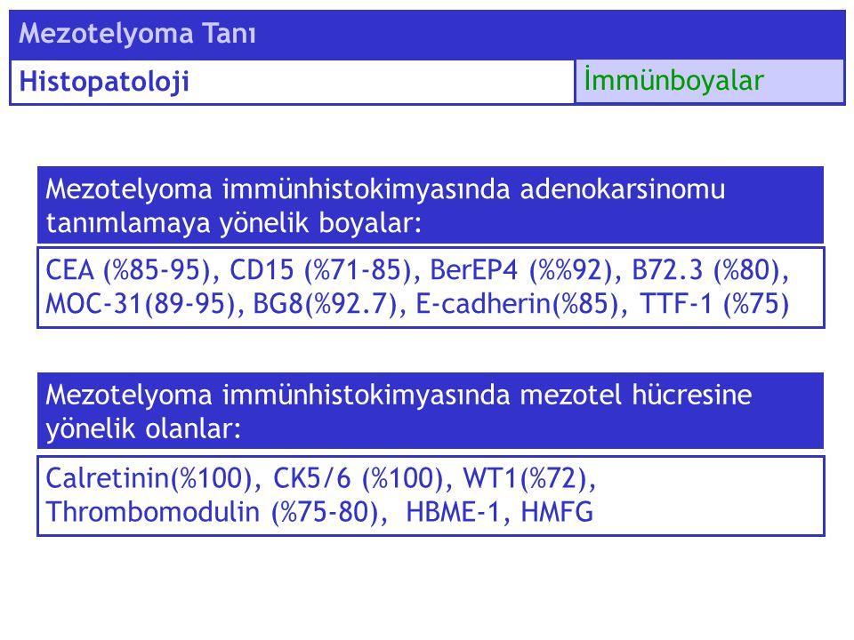 Mezotelyoma immünhistokimyasında adenokarsinomu tanımlamaya yönelik boyalar: Mezotelyoma Tanı Histopatoloji İmmünboyalar CEA (%85-95), CD15 (%71-85),