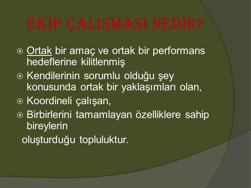 EK İ P ÇALI Ş MASI NED İ R.