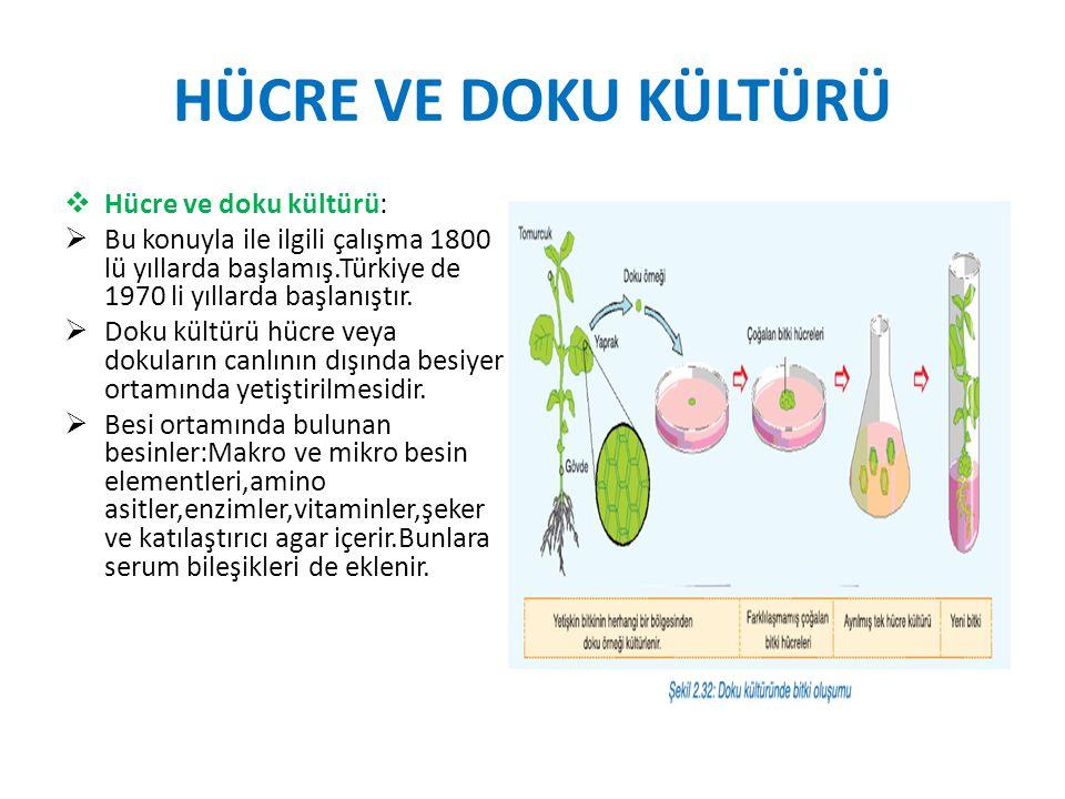 HÜCRE VE DOKU KÜLTÜRÜ  Hücre ve doku kültürü:  Bu konuyla ile ilgili çalışma 1800 lü yıllarda başlamış.Türkiye de 1970 li yıllarda başlanıştır.  Do