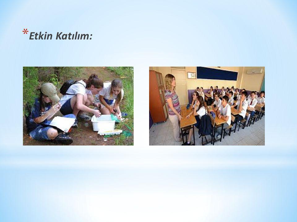 Öğrenme öğretme sürecinde öğrenciler ne kadar fazla duyu organını kullanırlarsa öğrenmeleride o denli kalıcı olur.