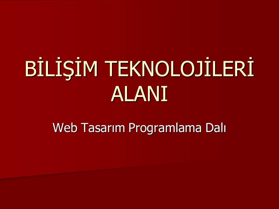 BİLİŞİM TEKNOLOJİLERİ ALANI Web Tasarım Programlama Dalı