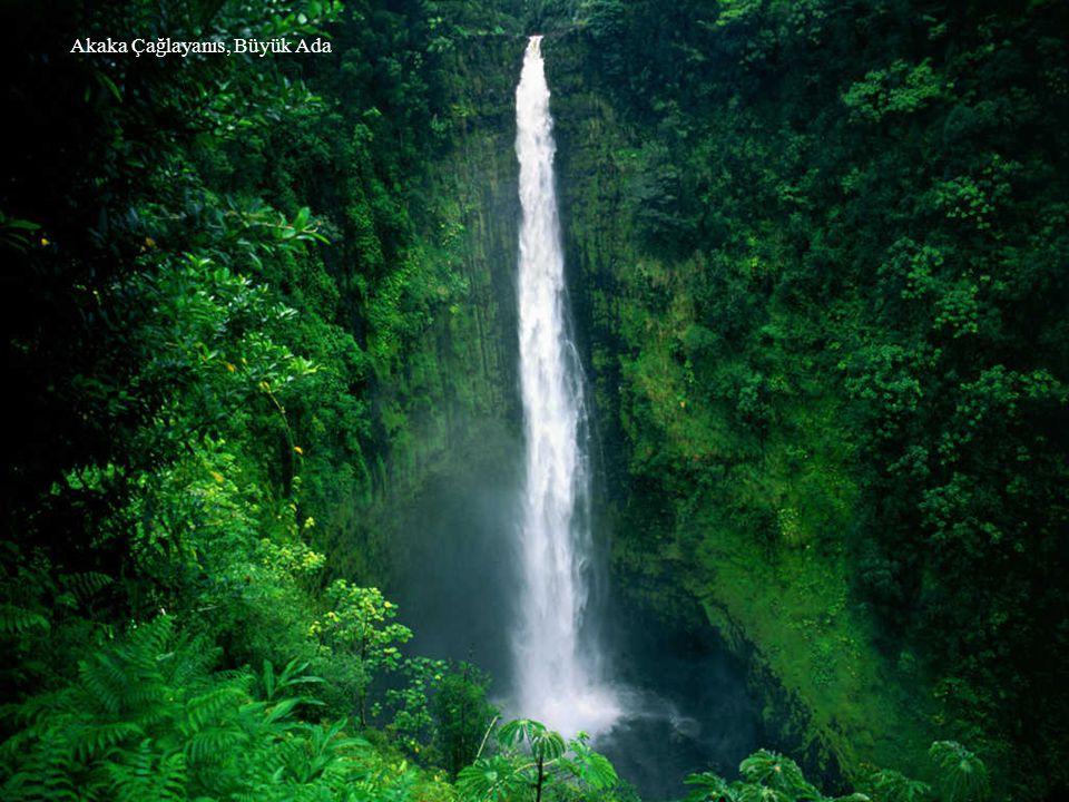 Wailua Çağlayanları, Kauai,