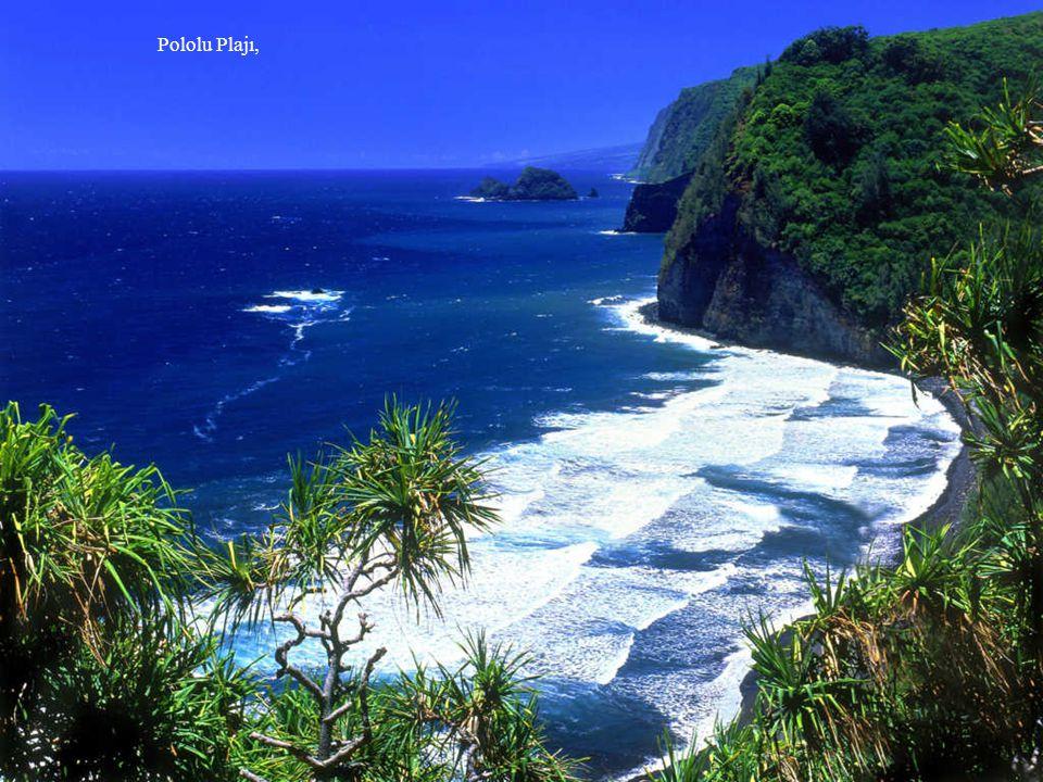 Pololu Plajı,