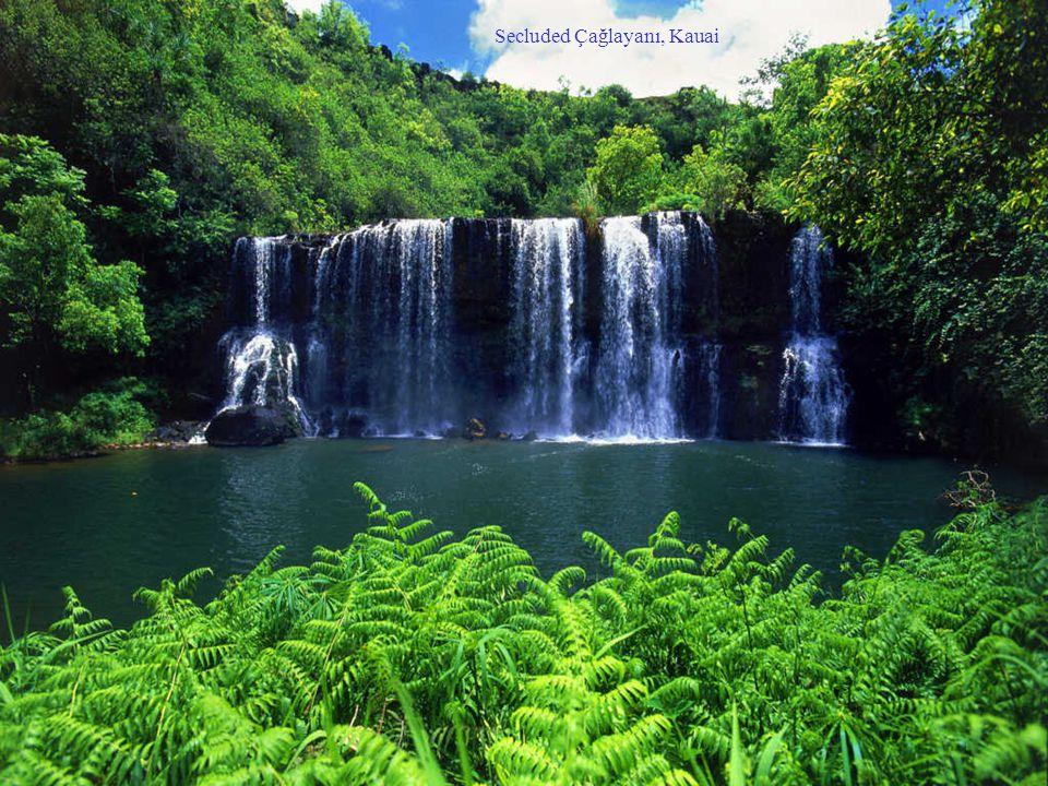 Secluded Çağlayanı, Kauai