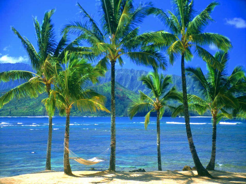 Kee Plajı, Kauai,