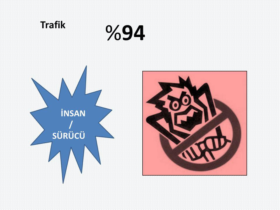 İNSAN / SÜRÜCÜ %94