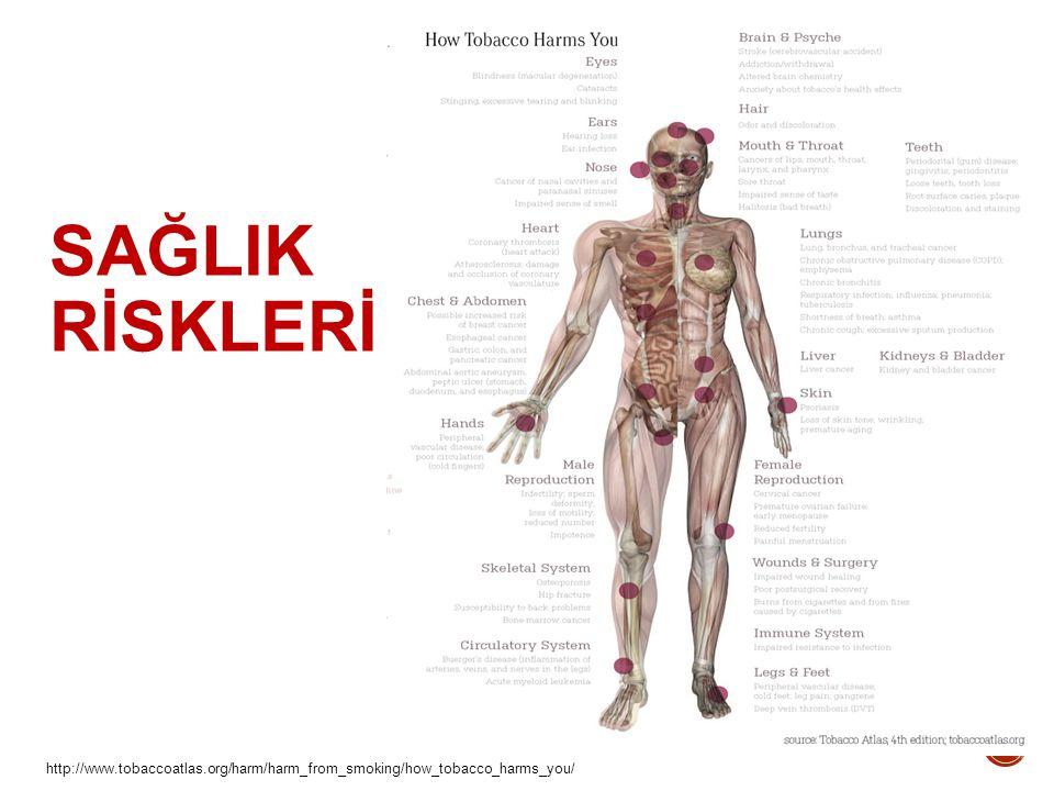 http://www.tobaccoatlas.org/harm/harm_from_smoking/how_tobacco_harms_you/ SAĞLIK RİSKLERİ