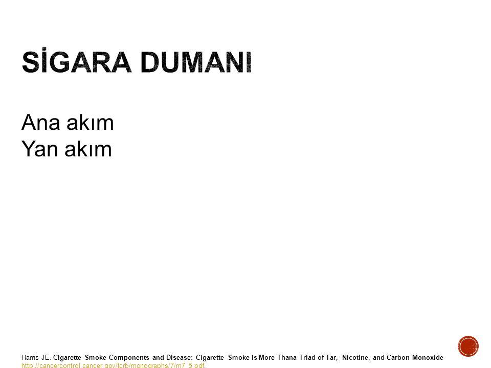 http://www.cdc.gov/tobacco/data_statistics/sgr/2010/consumer_booklet/pdfs/consumer.pdf DNA'da tahribat .