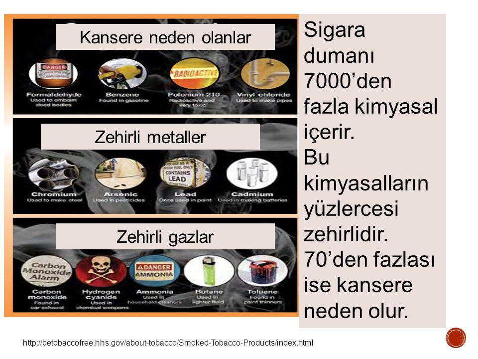 http://betobaccofree.hhs.gov/about-tobacco/Smoked-Tobacco-Products/index.html Sigara dumanı 7000'den fazla kimyasal içerir. Bu kimyasalların yüzlerces