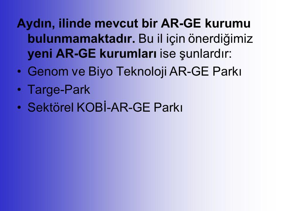 Aydın, ilinde mevcut bir AR-GE kurumu bulunmamaktadır. Bu il için önerdiğimiz yeni AR-GE kurumları ise şunlardır: Genom ve Biyo Teknoloji AR-GE Parkı