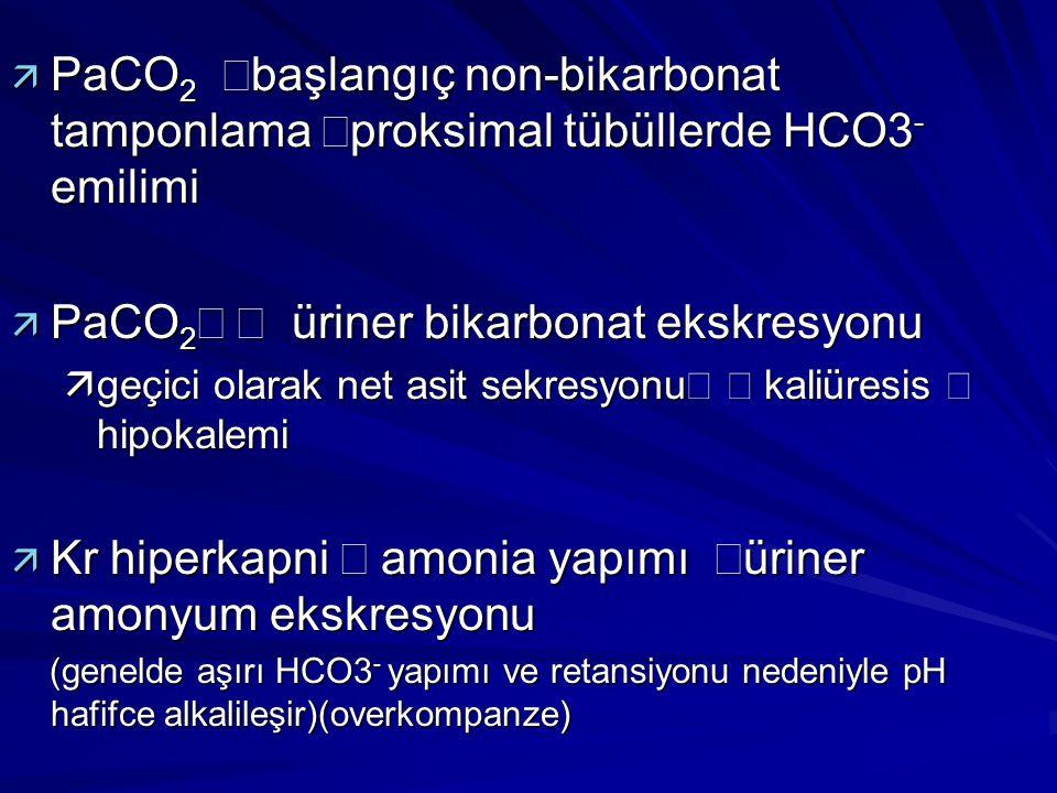  PaCO 2  başlangıç non-bikarbonat tamponlama  proksimal tübüllerde HCO3 - emilimi   PaCO 2   üriner bikarbonat ekskresyonu   geçici olarak n