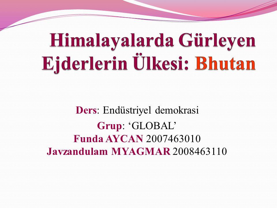Ders: Endüstriyel demokrasi Grup: 'GLOBAL' Funda AYCAN 2007463010 Javzandulam MYAGMAR 2008463110