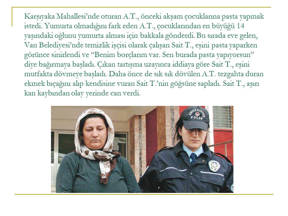 AİLE İÇİ ŞİDDET ARAŞTIRMA T.C.