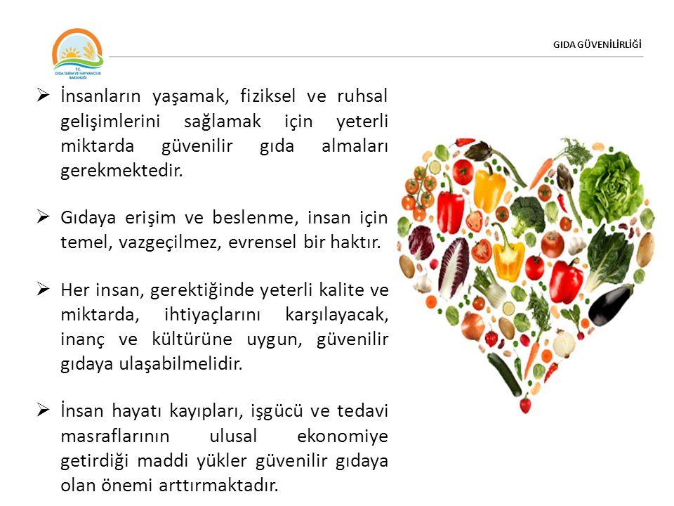 GIDA GÜVENİLİRLİĞİ Gıda Güvenilirliği Gıdalarda olabilecek fiziksel, kimyasal, biyolojik ve her türlü zararların bertaraf edilmesi için alınan tedbirler bütünü İnsanların doğal hakkı olan sağlıklı yaşama ulaşabilmeleri için uygun fiyatta, sağlıklı, yeterli, besleyici ve güvenilir gıdaya erişimin sağlanması Gıda Güvencesi / Güvenliği