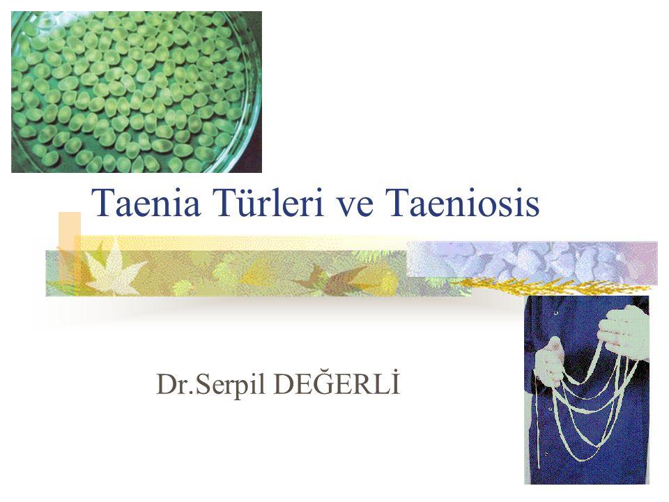 Taenia Türleri ve Taeniosis Dr.Serpil DEĞERLİ