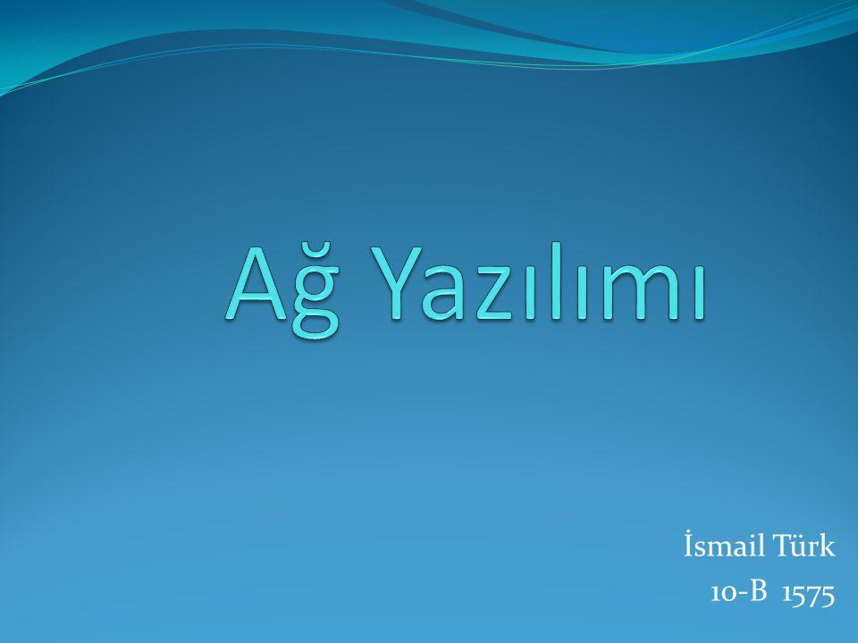 İsmail Türk 10-B 1575